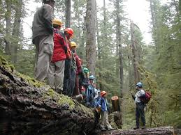 Participants at H.J. Andrews Experimental Forest