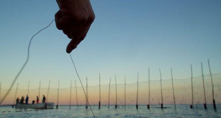 Hand, fishermen, and weir